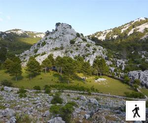 Llanos del endrinal - Sierra Grazalema