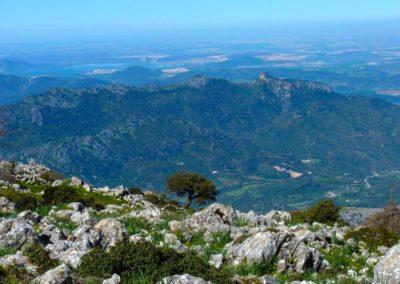 Paisajes Sierra Grazalema